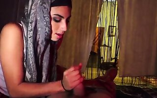 Muslim girl white man and undiluted arab Afgan whorehouses